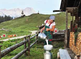 Bergbauernmilch Unternehmensfilm