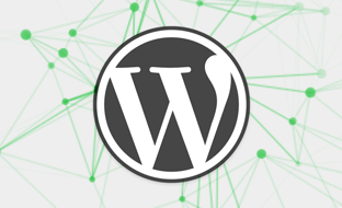 WordPress Multisite CLI